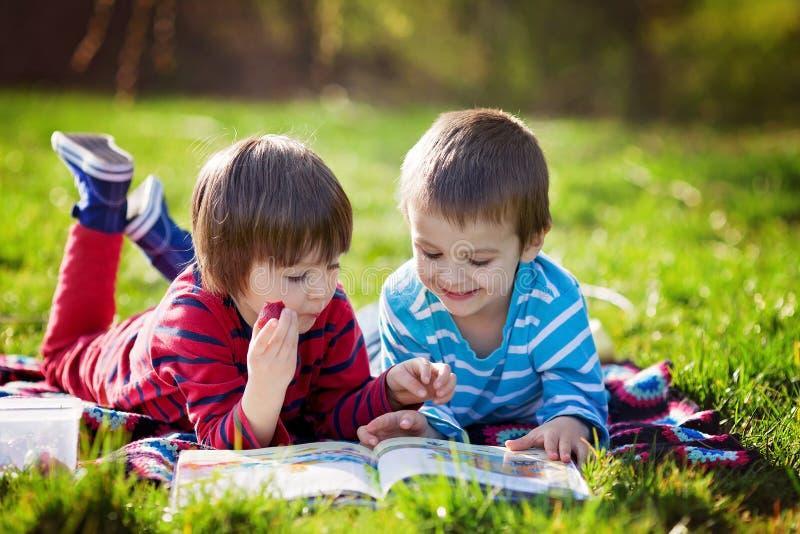 Dos muchachos caucásicos lindos adorables, mintiendo en el parque en un su fino imágenes de archivo libres de regalías
