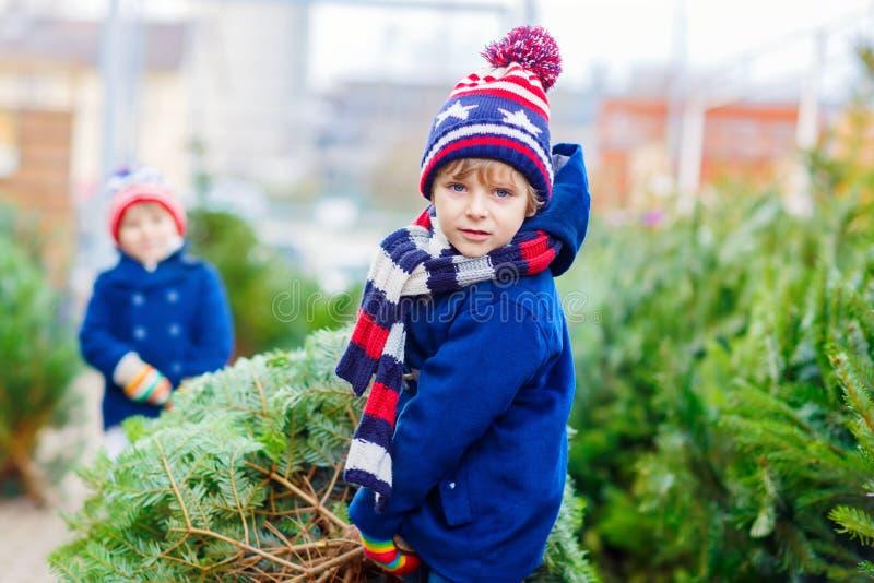 Dos muchachos del niño que compran el árbol de navidad en tienda al aire libre imagenes de archivo