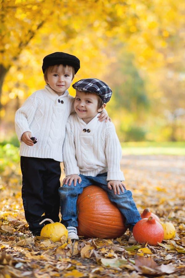 Dos muchachos en el parque, sentándose en una calabaza grande, sonriendo imagen de archivo