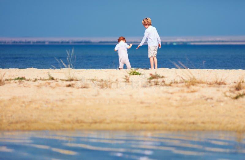 Dos muchachos, hermanos que caminan en la playa arenosa por la mañana en el lago costean fotografía de archivo libre de regalías