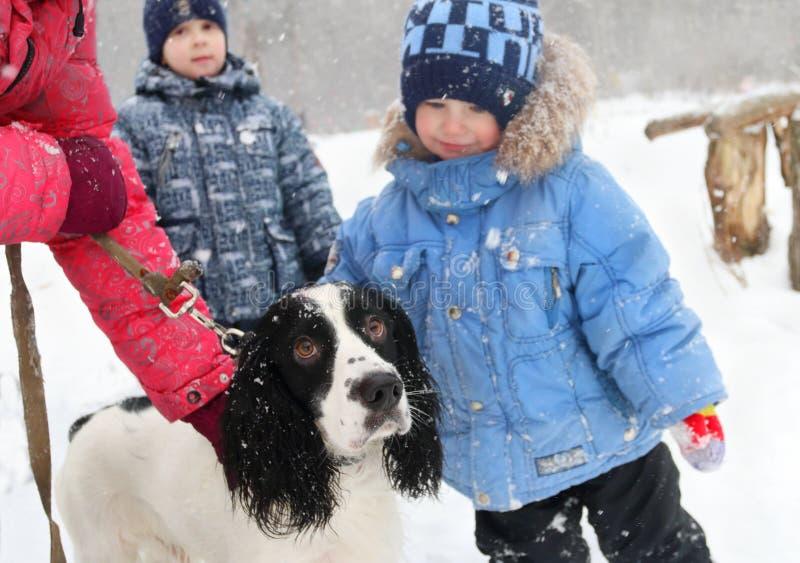 Dos muchachos y perros y manos de dueño del perro durante las nevadas foto de archivo