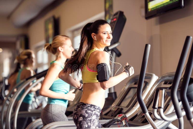 Dos mujeres aptas que corren en las ruedas de ardilla en gimnasio moderno imagen de archivo