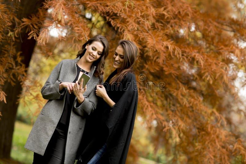 Dos mujeres bastante jovenes que usan el teléfono móvil en el bosque del otoño foto de archivo
