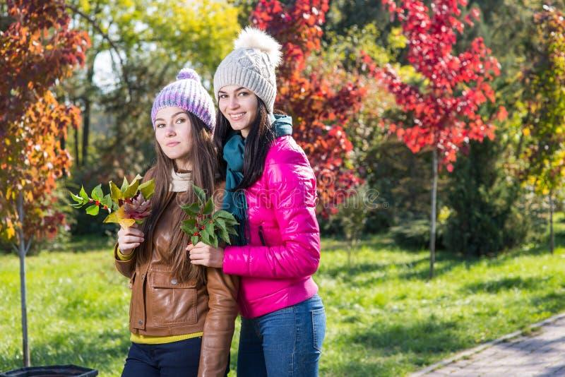 Dos mujeres en parque del otoño fotografía de archivo libre de regalías
