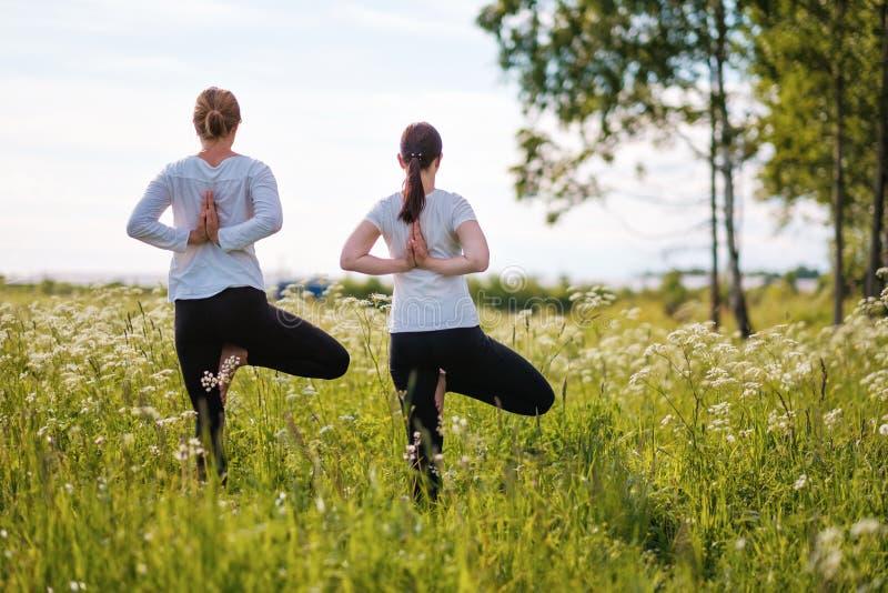 Dos mujeres le que hacen yoga ejercitan, colocándose en una pierna en el aire libre en parque de naturaleza imagen de archivo