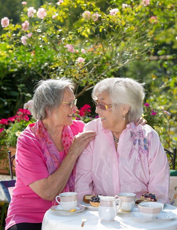 Dos mujeres mayores alegres que comen té en jardín foto de archivo libre de regalías