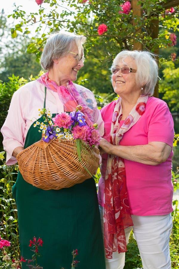 Dos mujeres mayores con la cesta que se coloca en jardín imágenes de archivo libres de regalías