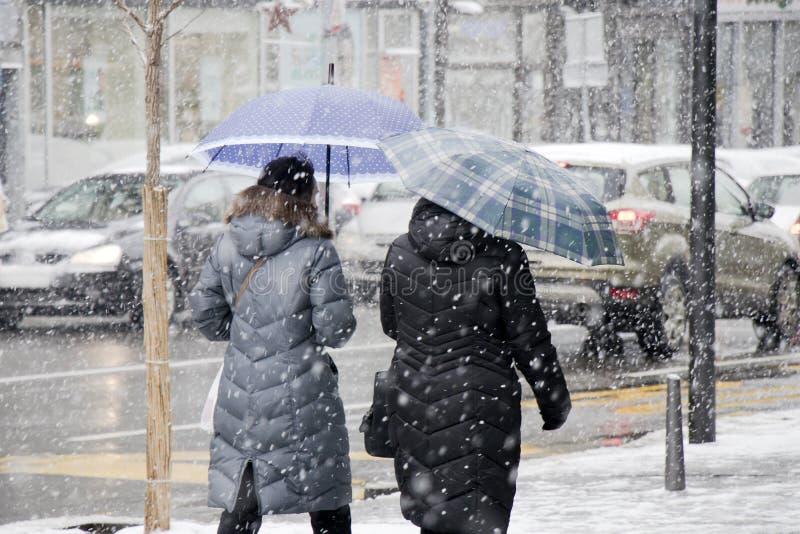 Dos mujeres que caminan debajo de los paraguas en ventisca y tráfico de la ciudad detrás de ellos fotografía de archivo libre de regalías