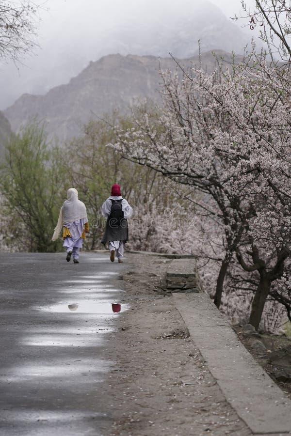 Dos mujeres que caminan en un camino en el valle de Nagar durante Cherry Blossum sazonan foto de archivo libre de regalías