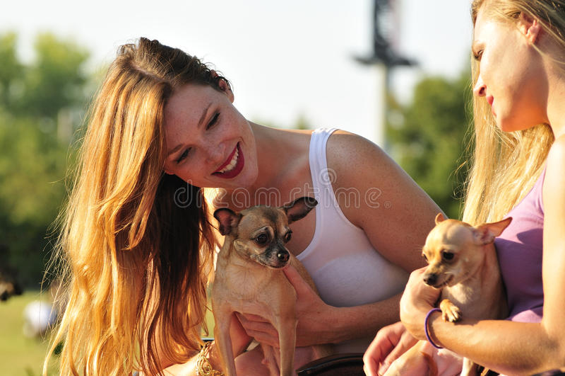 Dos mujeres que juegan con los perritos lindos fotografía de archivo libre de regalías