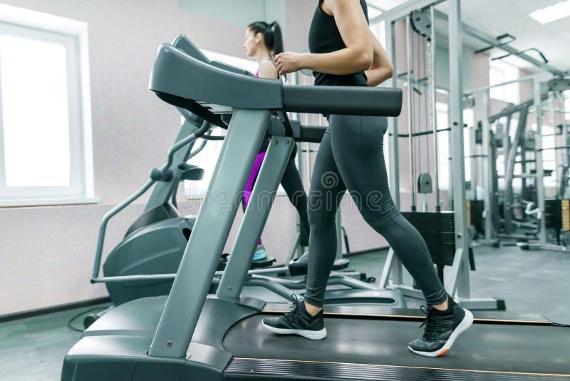Dos mujeres sanas de la aptitud joven en la rueda de ardilla en el gimnasio moderno del deporte Aptitud, deporte, entrenamiento,  fotografía de archivo