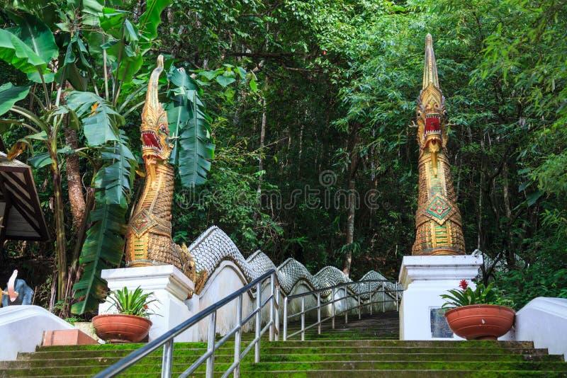 Dos Naga bloquean a guardas en el Entrace de la escalera cuesta arriba al templo de Wat Phra That Doi Tung, Chiang Rai, Tailandia imagenes de archivo