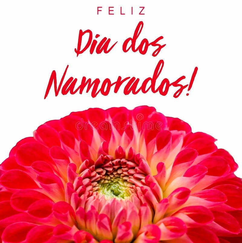 Dos Namorados de Feliz Dia! texto no português: Dia feliz de Valentine's! e flor vermelha e cor-de-rosa da dália fotografia de stock royalty free