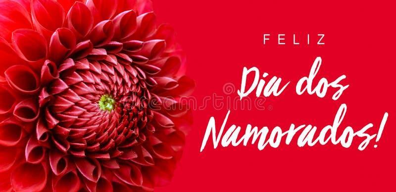 Dos Namorados de Feliz Dia! texto no português: Dia feliz de Valentine's! e quadro largo da beira da bandeira da flor vermelha  imagens de stock royalty free