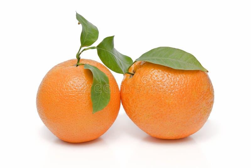 Dos naranjas con las hojas. fotos de archivo