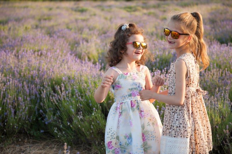 Dos niñas lindas en vestidos y gafas de sol entre verano de los campos de flor fotografía de archivo