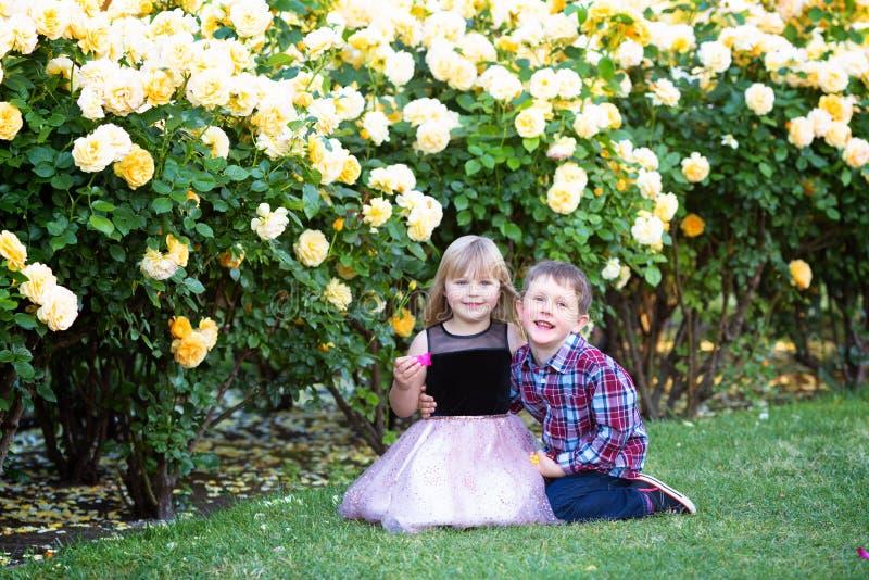 Dos niños caucásicos que se sientan en una hierba verde en una rosaleda y un abrazo, el hermano y la hermana, hermanos, fotos de archivo libres de regalías