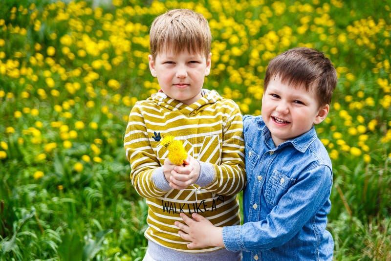 Dos niños pequeños que abrazan en el césped del diente de león imagenes de archivo