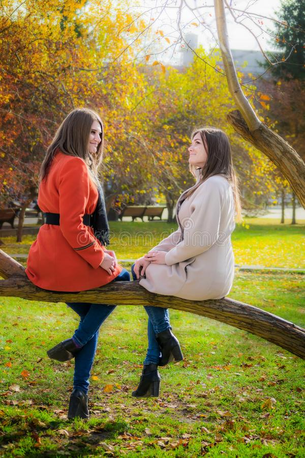 Dos novias alegres se están sentando en una rama de árbol en el par imágenes de archivo libres de regalías