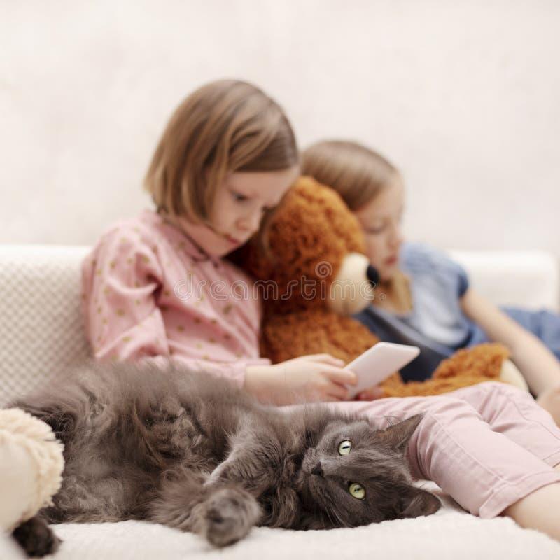 Dos a?os de las hermanas 7 y 8 de las ni?as est?n mirando un eBook y un smartphone en casa en el sof? con su gato imagenes de archivo