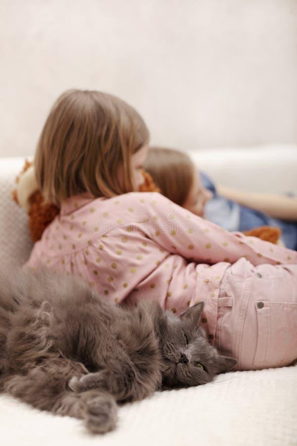 Dos a?os de las hermanas 7 y 8 de las ni?as est?n mirando un eBook y un smartphone en casa en el sof? con su gato imagen de archivo libre de regalías