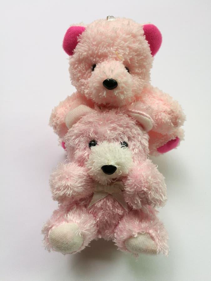 Dos osos de peluche aislados foto de archivo