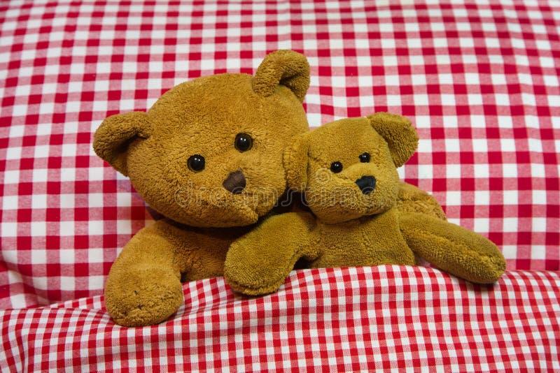 Dos osos de peluche marrones que mienten en cama a cuadros. fotos de archivo libres de regalías