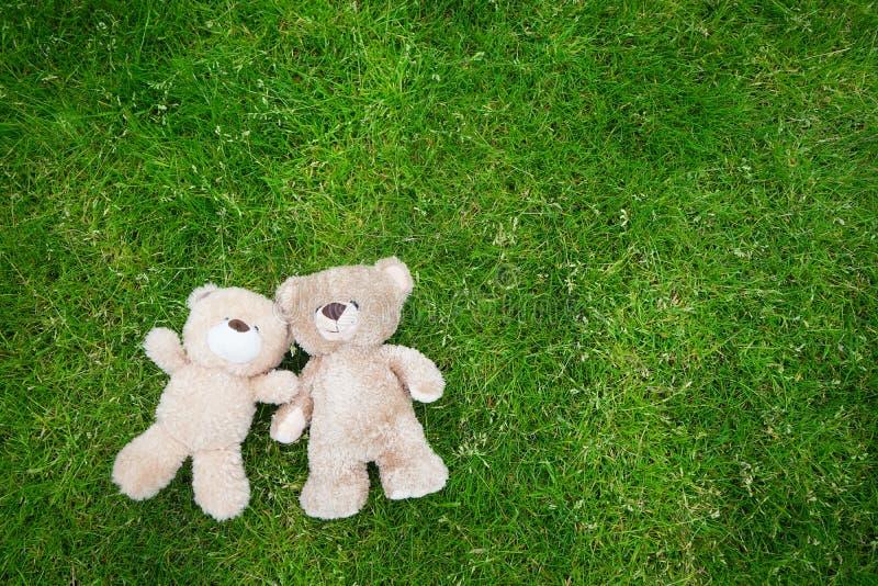 Dos osos de peluche que colocan para el fondo de la tarjeta del día de San Valentín imagenes de archivo