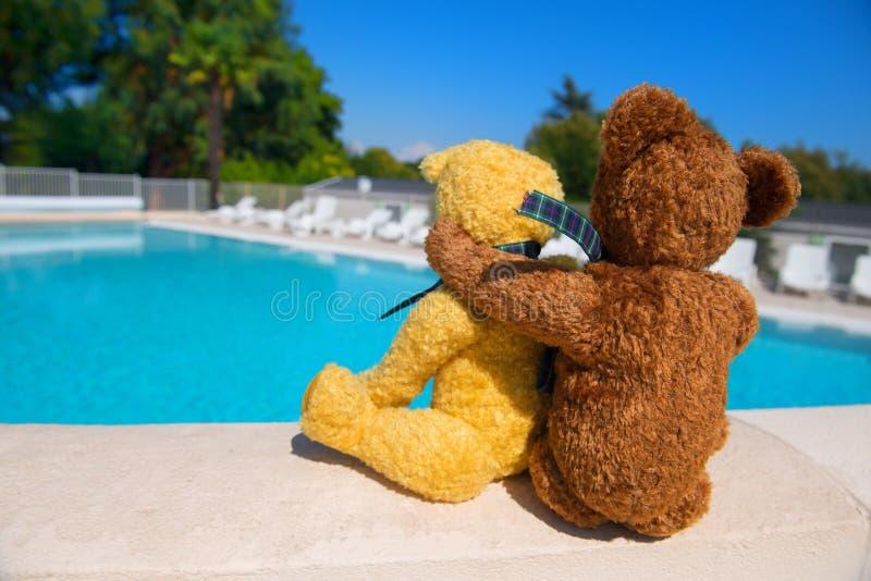 Dos osos del juguete en amor en la piscina foto de archivo