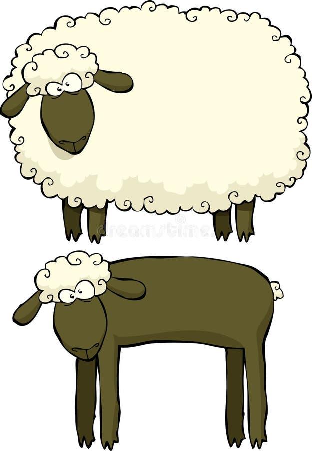 Dos ovejas ilustración del vector