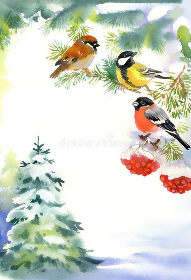 Dos pájaros y piñoneros en la rama nevosa stock de ilustración
