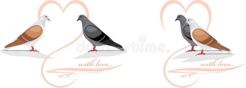 Dos palomas cariñosas libre illustration