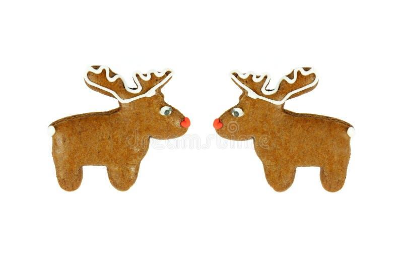 Dos panes de jengibre del reno de la Navidad en blanco fotografía de archivo libre de regalías