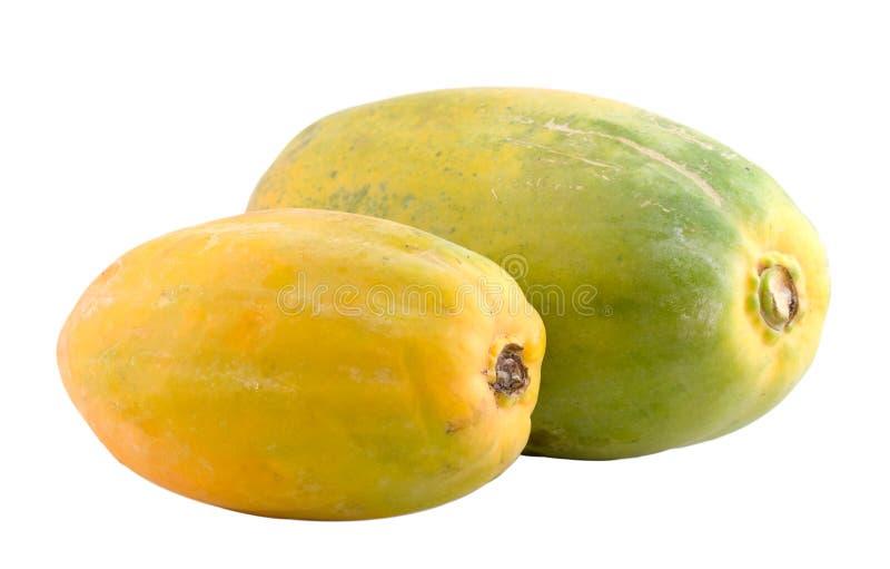 Dos papayas hawaianas fotografía de archivo libre de regalías