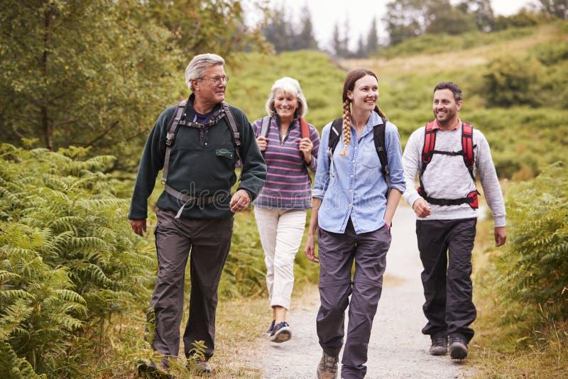 Dos pares mezclados de la edad que caminan en una trayectoria del campo durante la aventura que acampa de la familia, vista delan imagenes de archivo