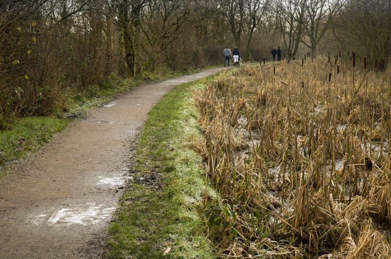 Dos pares por la trayectoria del canal en invierno fotos de archivo