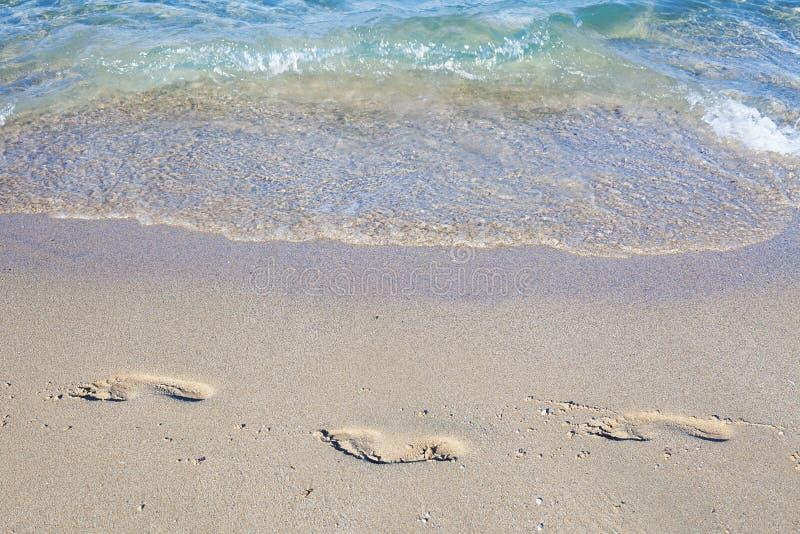 Download Dos pasos en arena imagen de archivo. Imagen de océano - 100527211