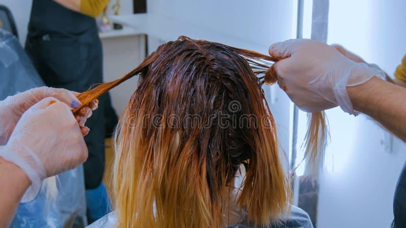 Dos peluqueros profesionales que colorean el pelo del cliente de la mujer en el estudio imagen de archivo libre de regalías