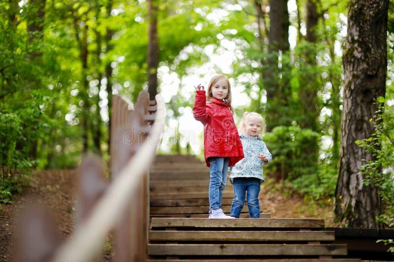 Download Dos Pequeñas Hermanas Que Caminan Encima De Las Escaleras Imagen de archivo - Imagen de lindo, cabrito: 42443413