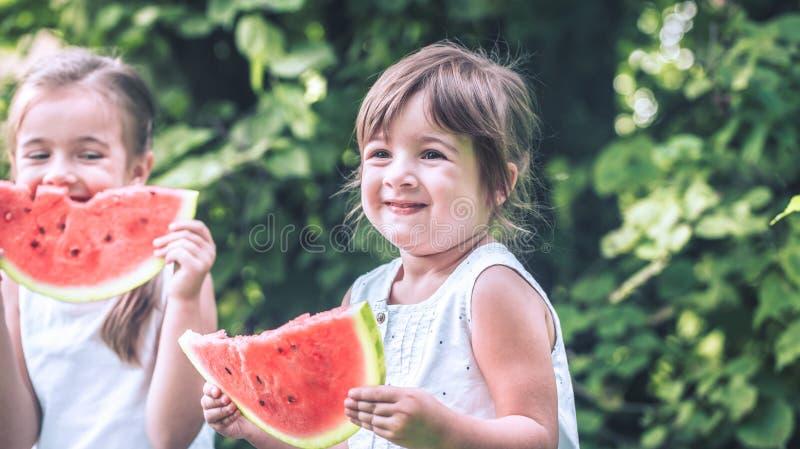 Dos pequeñas muchachas lindas que comen la sandía al aire libre foto de archivo libre de regalías