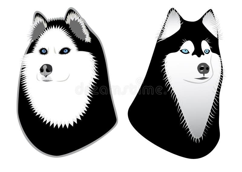 Dos perros fornidos libre illustration