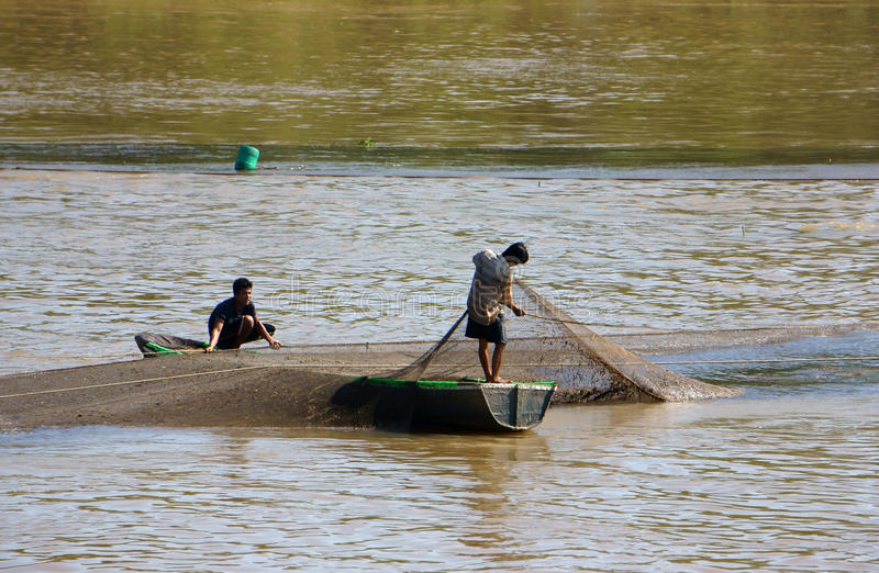 Dos pescados de cogida del pescador por la red fotos de archivo