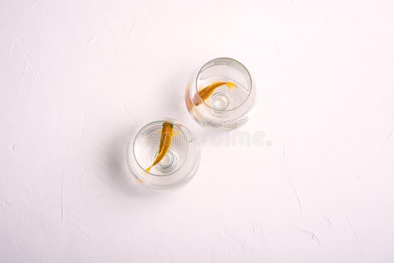 Dos pescados de oro Los pescados del acuario nadan en los vidrios para el vino pets El concepto de relaciones, divorcio, distanci imagenes de archivo