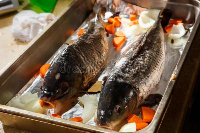 dos pescados rellenos grandes listos para guisar en la bandeja que cuece imagenes de archivo