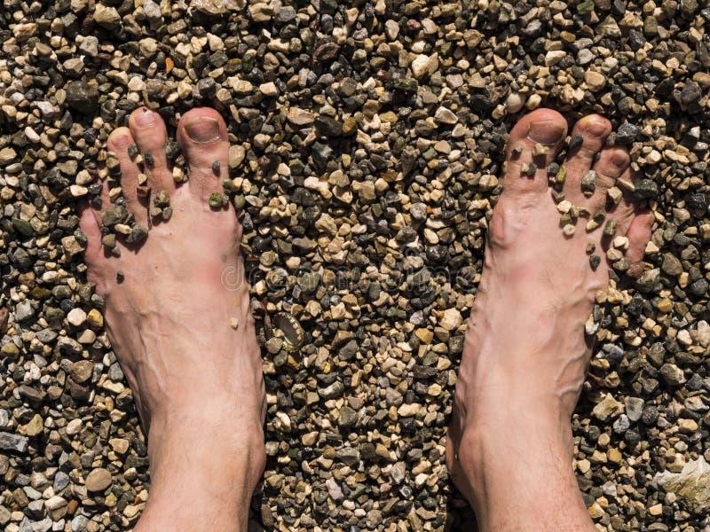 Dos pies blancos masculinos tomaron el sol en la arena de la playa imagen de archivo