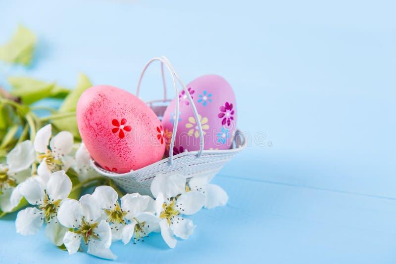Dos pintaron rosa y los huevos de Pascua p?rpuras en cesta con las flores blancas de la cereza de la primavera en fondo azul clar imagenes de archivo