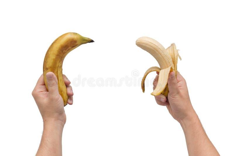 Dos plátanos en las manos Fondo blanco aislado imagen de archivo