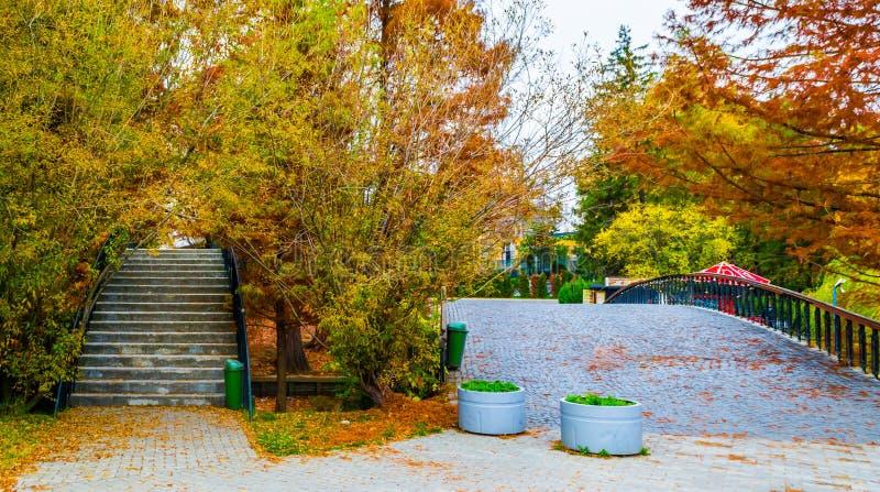 Dos puentes en parque foto de archivo libre de regalías
