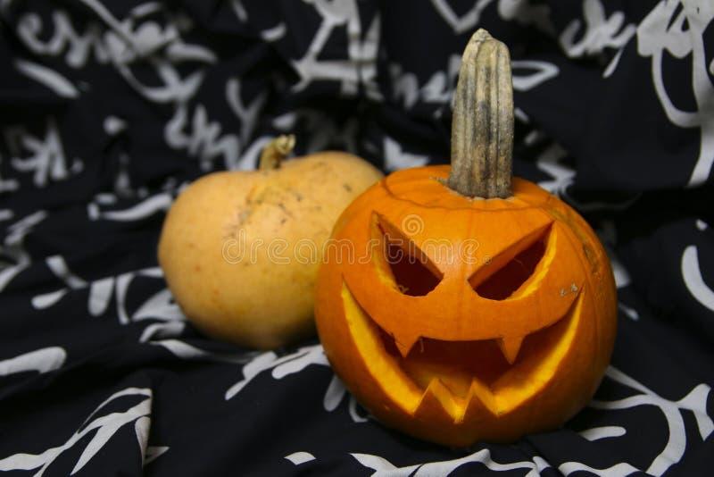 Dos pumkins para la celebración de Halloween imagen de archivo libre de regalías