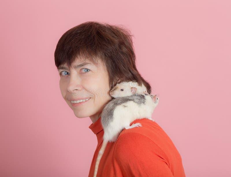 Dos ratas en el hombro foto de archivo